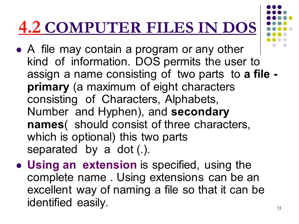 COMPUTER FILES IN DOS A file may contain a program or any other kind of information.