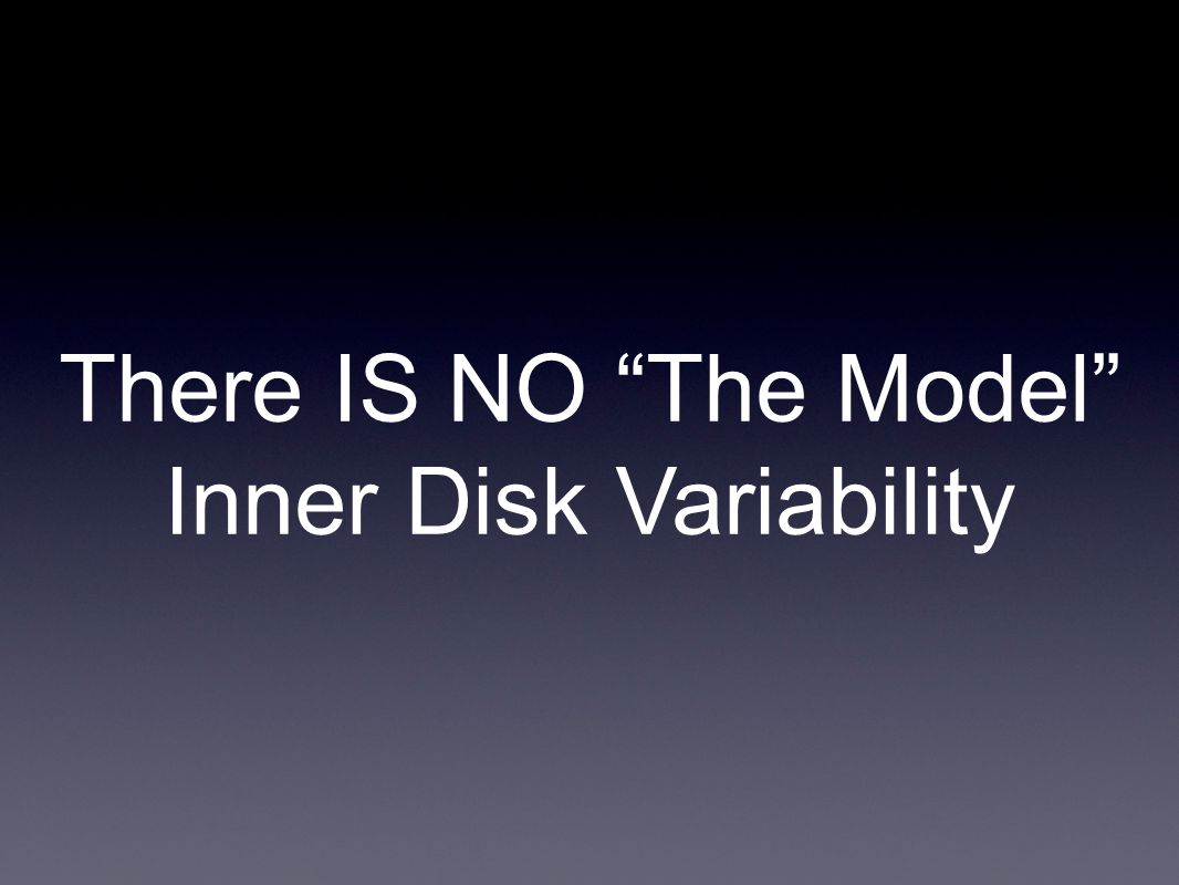 There IS NO The Model Inner Disk Variability
