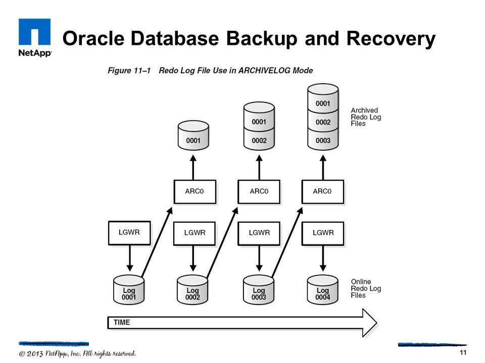 Oracle Database Backup and Recovery 11