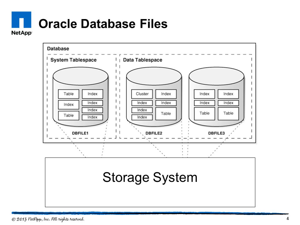 Oracle Database Files 4 Storage System