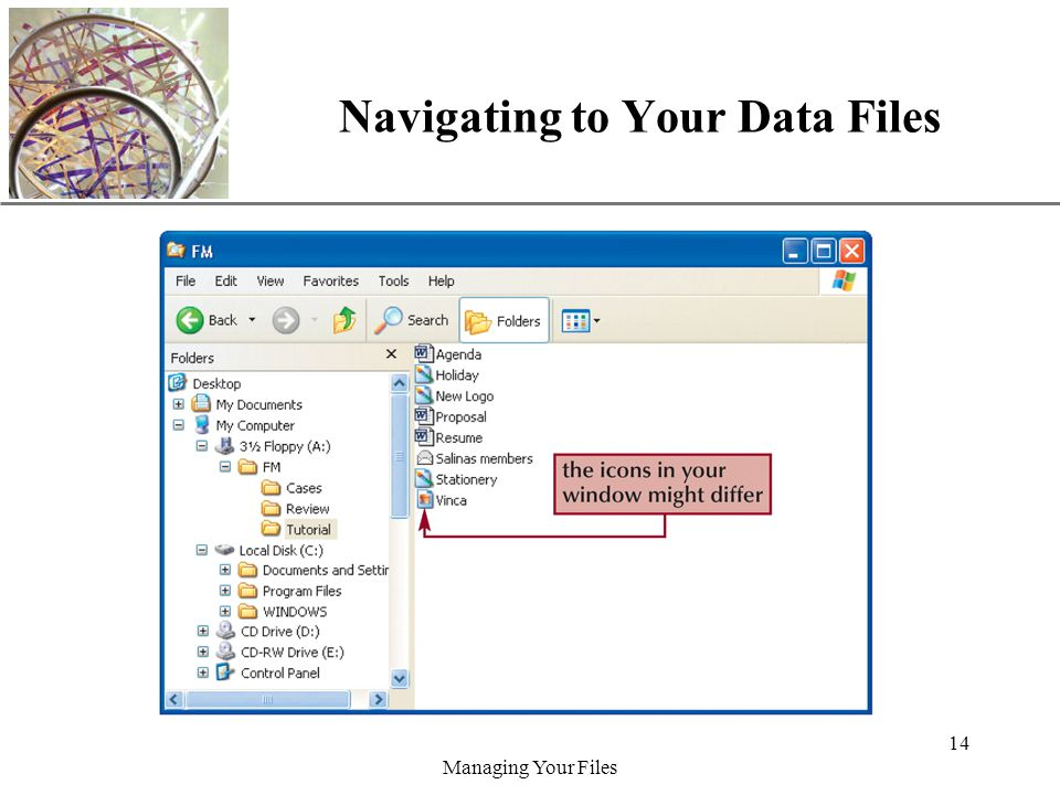 XP Managing Your Files 14 Navigating to Your Data Files