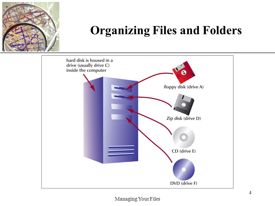 XP Managing Your Files 4 Organizing Files and Folders