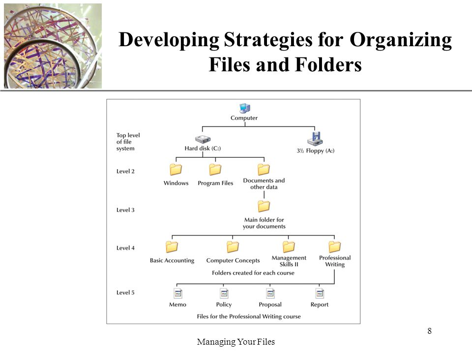 XP Managing Your Files 8 Developing Strategies for Organizing Files and Folders