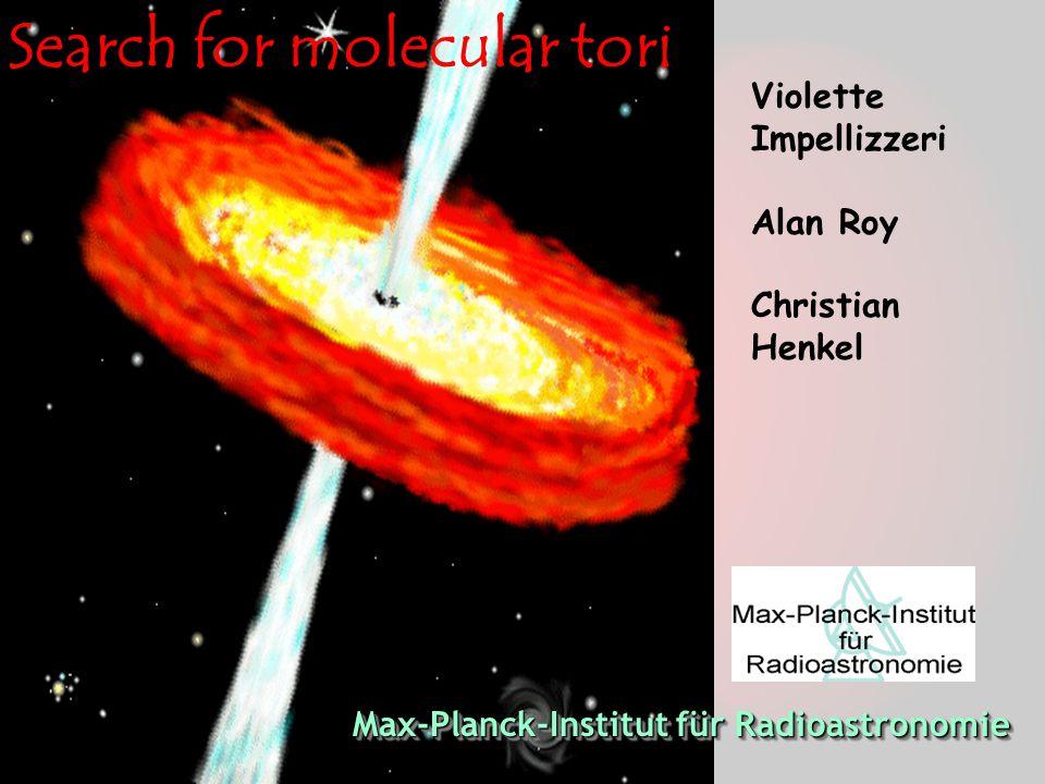 Search for molecular tori Violette Impellizzeri Alan Roy Christian Henkel Max-Planck-Institut für Radioastronomie