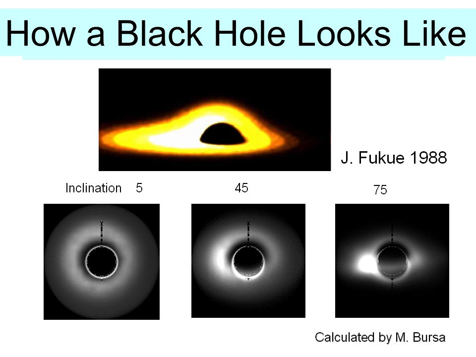 State Transitions in Black Hole Candidates