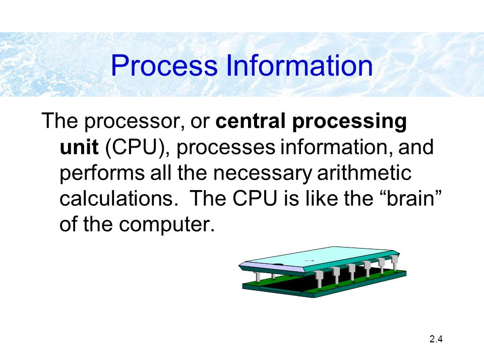 2.4 Process Information The processor, or central processing unit (CPU), processes information, and performs all the necessary arithmetic calculations