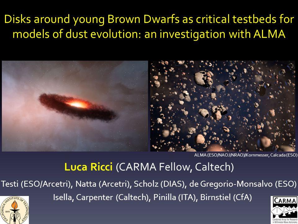 Disks around young Brown Dwarfs as critical testbeds for models of dust evolution: an investigation with ALMA Luca Ricci (CARMA Fellow, Caltech) Testi (ESO/Arcetri), Natta (Arcetri), Scholz (DIAS), de Gregorio-Monsalvo (ESO) Isella, Carpenter (Caltech), Pinilla (ITA), Birnstiel (CfA) ALMA (ESO/NAOJ/NRAO)/Kornmesser, Calcada (ESO)