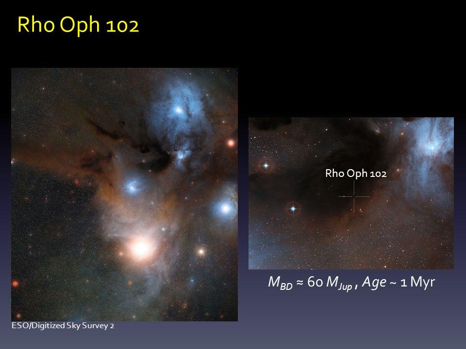 Rho Oph 102 M BD 60 M Jup, Age ~ 1 Myr Rho Oph 102 ESO/Digitized Sky Survey 2