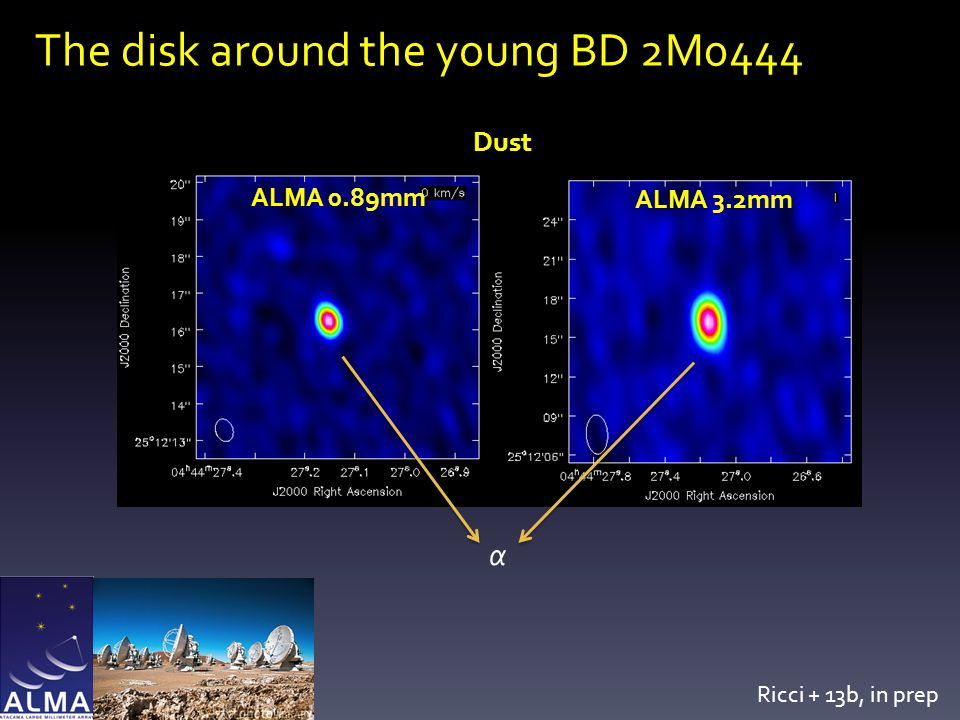 The disk around the young BD 2M0444 α ALMA 0.89mm ALMA 3.2mm Ricci + 13b, in prep Dust α