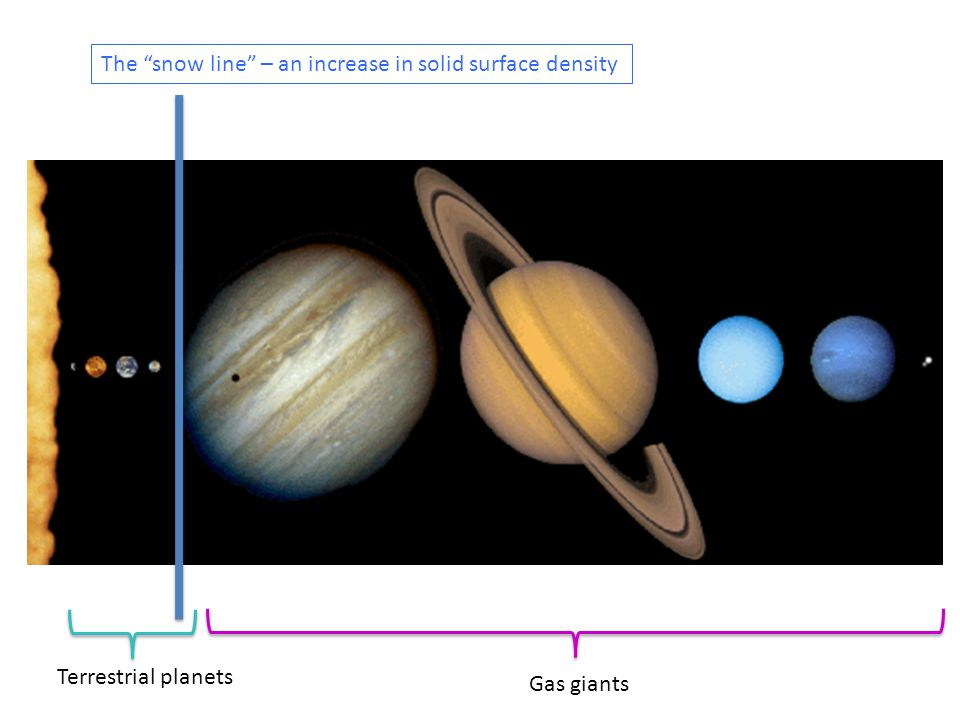 Gas giants Terrestrial planets The snow line – an increase in solid surface density