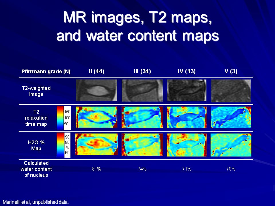 MR images, T2 maps, and water content maps Marinelli et al, unpublished data.