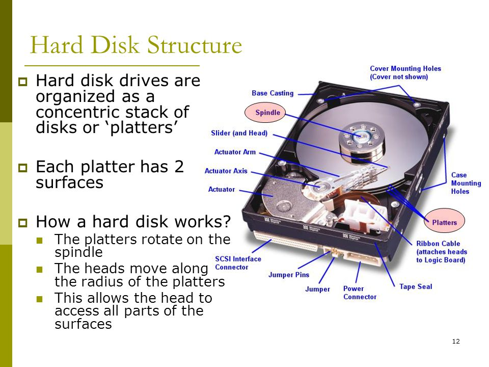 BIS@DSU 12 Hard Disk Structure Hard disk drives are organized as a concentric stack of disks or platters Each platter has 2 surfaces How a hard disk w