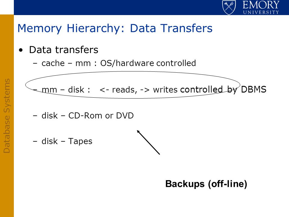 Database Systems Memory Hierarchy: Data Transfers Data transfers –cache – mm : OS/hardware controlled –mm – disk : writes controlled by DBMS –disk – C