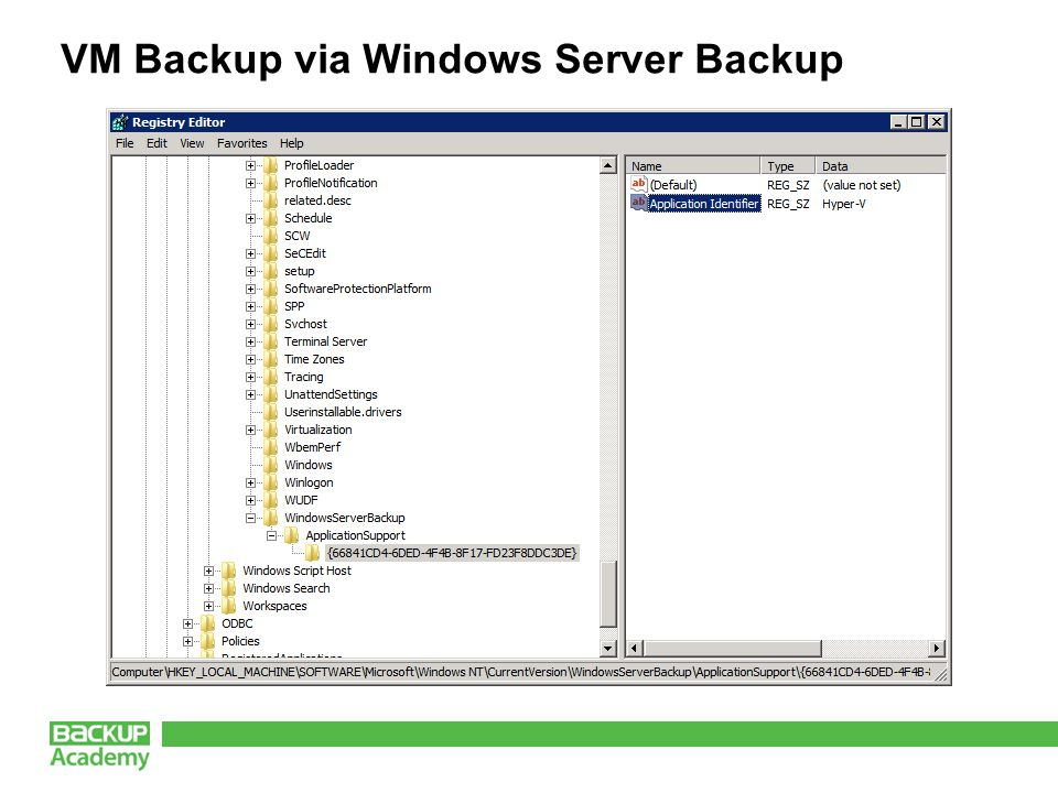 VM Backup via Windows Server Backup