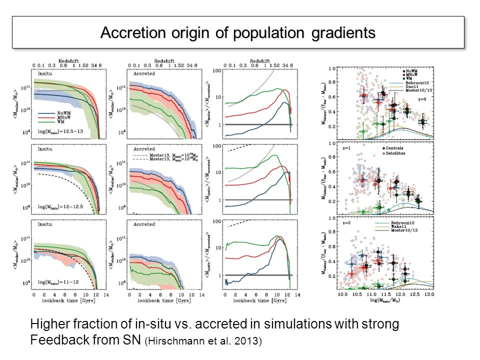 Accretion origin of population gradients Higher fraction of in-situ vs. accreted in simulations with strong Feedback from SN (Hirschmann et al. 2013)