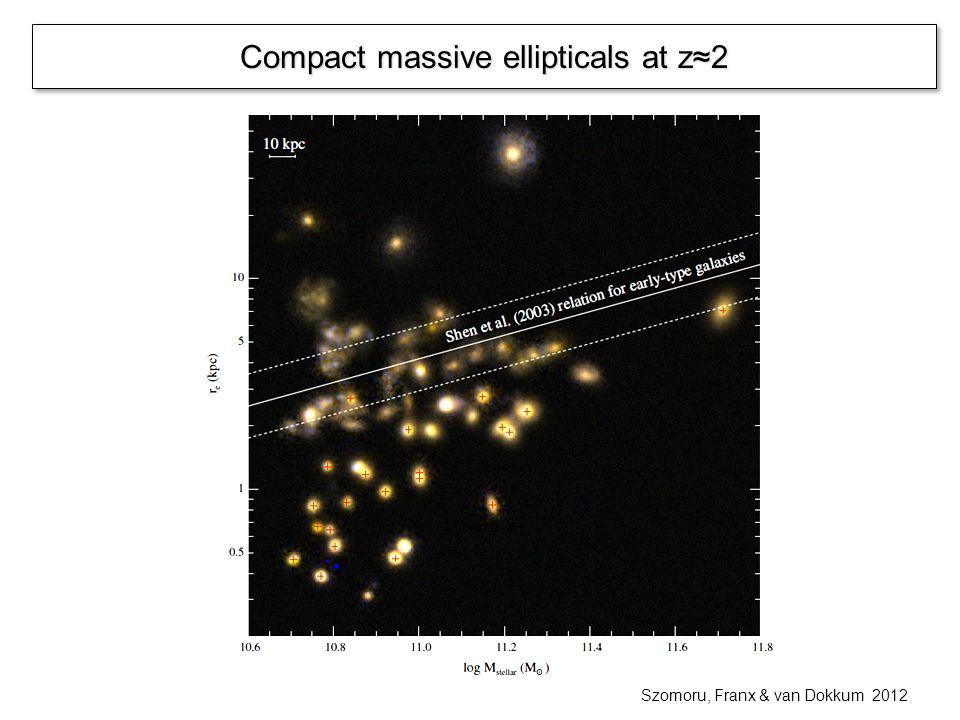 Size evolution … and some consequences o More massive galaxies had more accretion o In-situ stars are the core and accreted stars build the outer envelope o Mass-size relation is driven by accretion Oser et al.