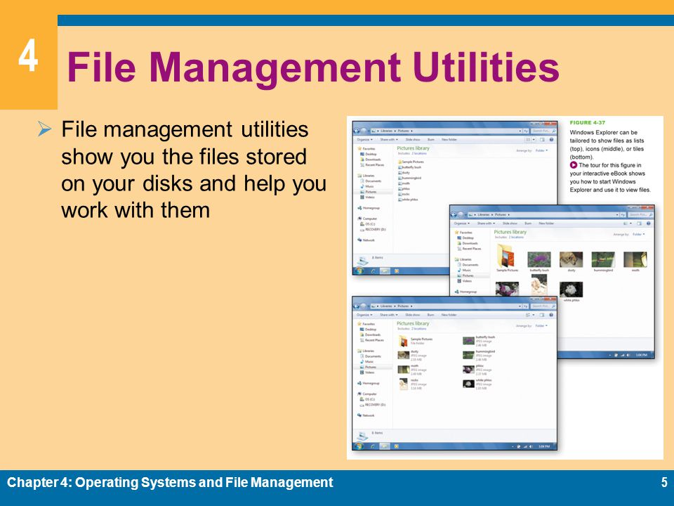 4 File Management Utilities File management utilities show you the files stored on your disks and help you work with them Chapter 4: Operating Systems