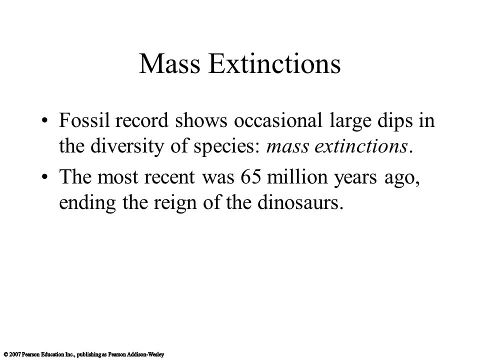 Mass Extinctions Fossil record shows occasional large dips in the diversity of species: mass extinctions. The most recent was 65 million years ago, en