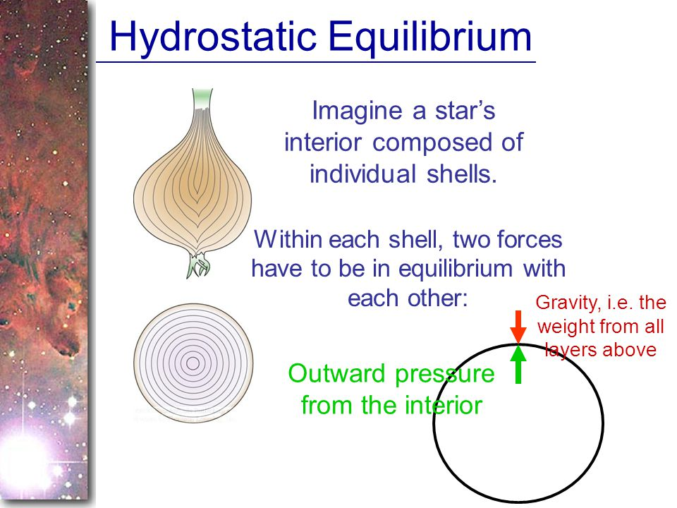 Hydrostatic Equilibrium Imagine a stars interior composed of individual shells.