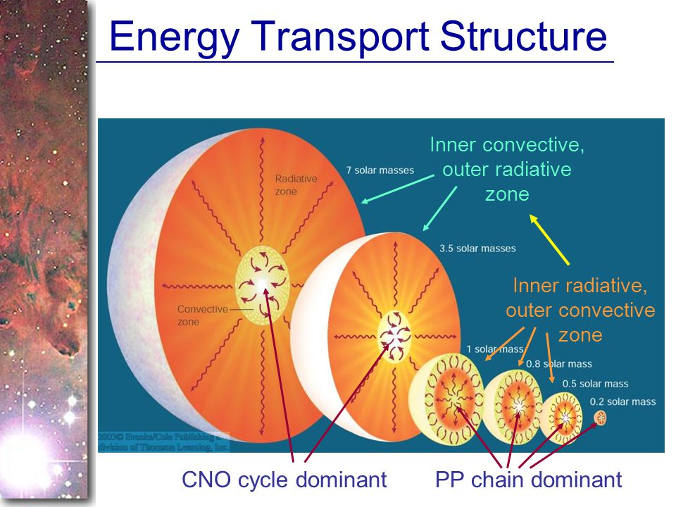 Energy Transport Structure Inner radiative, outer convective zone Inner convective, outer radiative zone CNO cycle dominantPP chain dominant