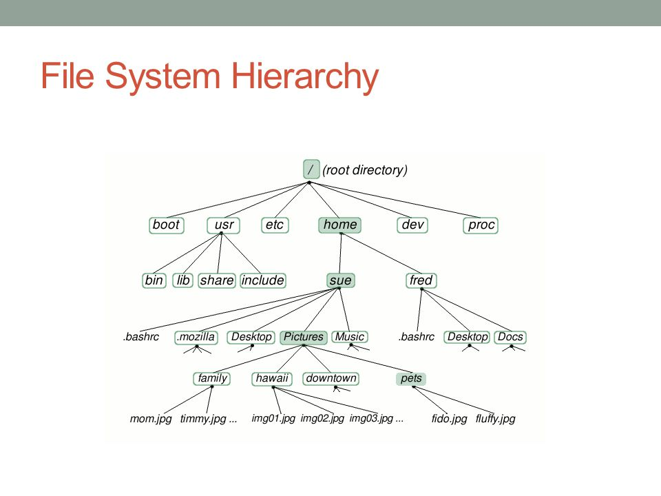 File System Hierarchy
