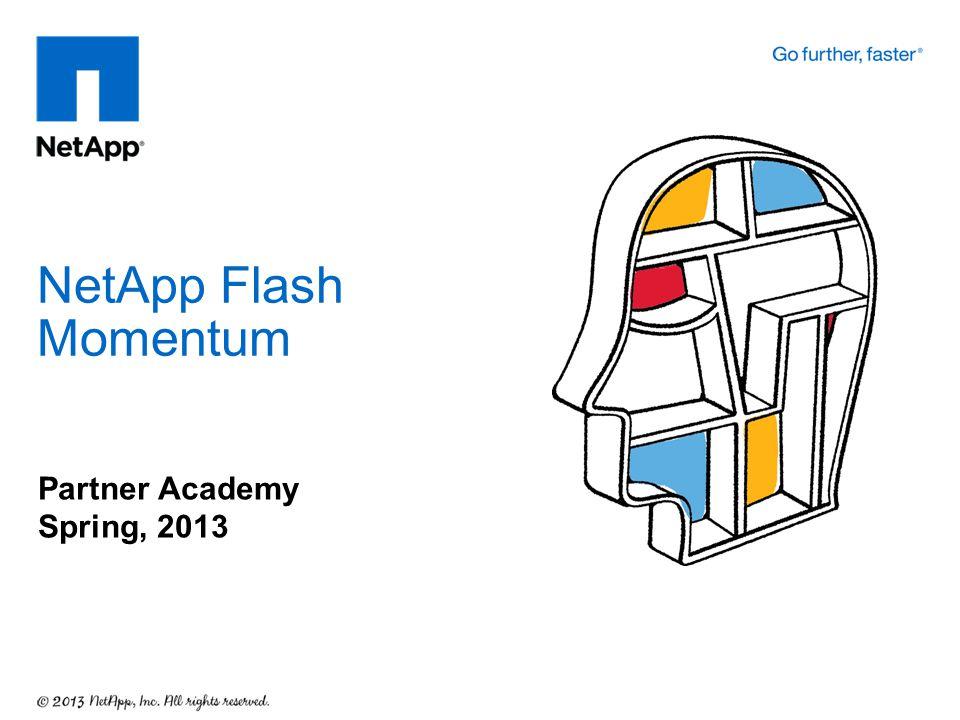NetApp Flash Momentum Partner Academy Spring, 2013