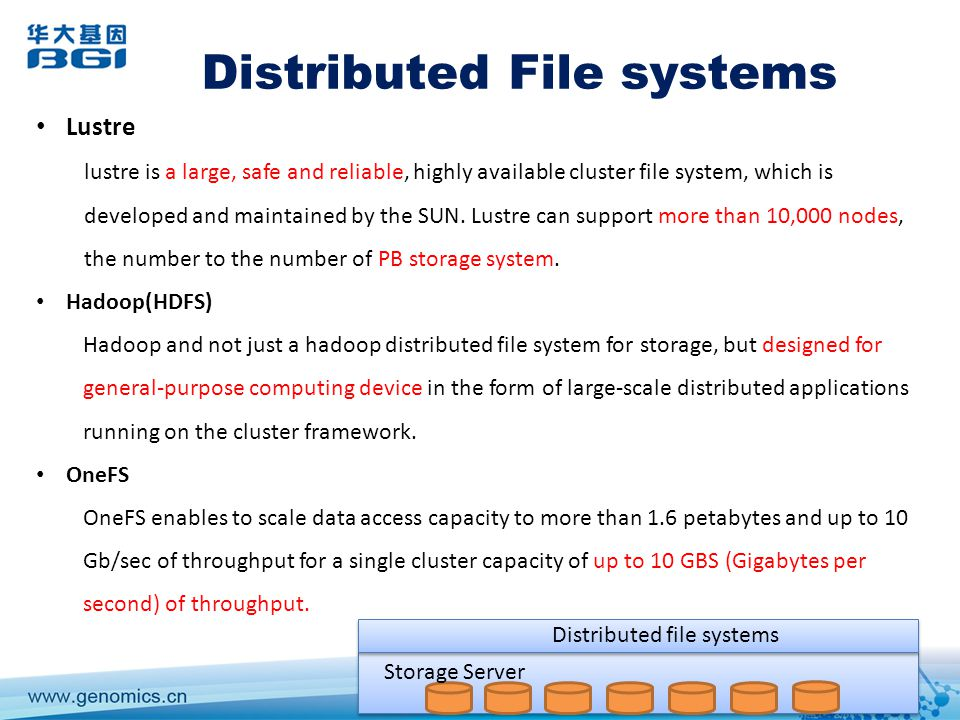 Storage Server Distributed file systems Distributed File systems Lustre lustre is a large, safe and reliable, highly available cluster file system, which is developed and maintained by the SUN.