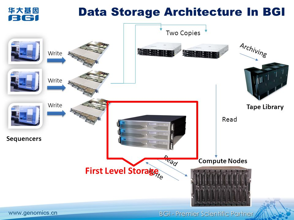 Data Storage Architecture In BGI Write Two Copies Read Write Compute Nodes Sequencers Tape Library Archiving First Level Storage