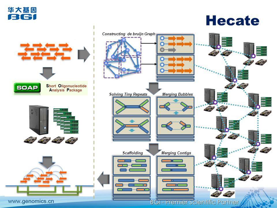 Hecate Constructing de bruijn Graph Solving Tiny RepeatsMerging Bubbles Scaffolding Merging Contigs
