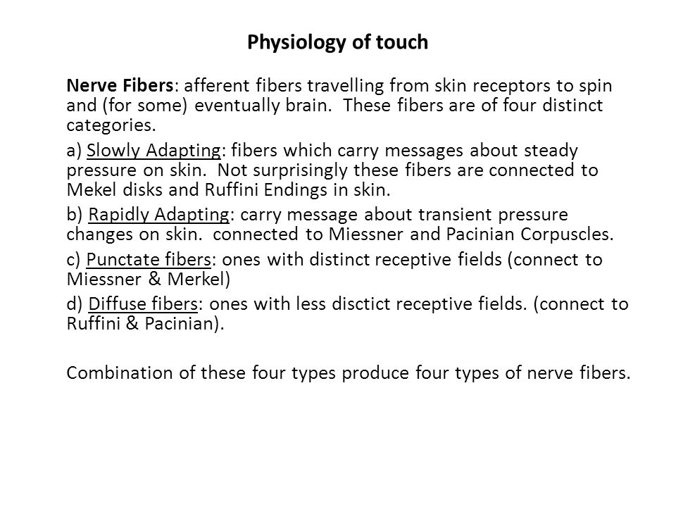 Physiology of touch Nerve Fibers: afferent fibers travelling from skin receptors to spin and (for some) eventually brain.