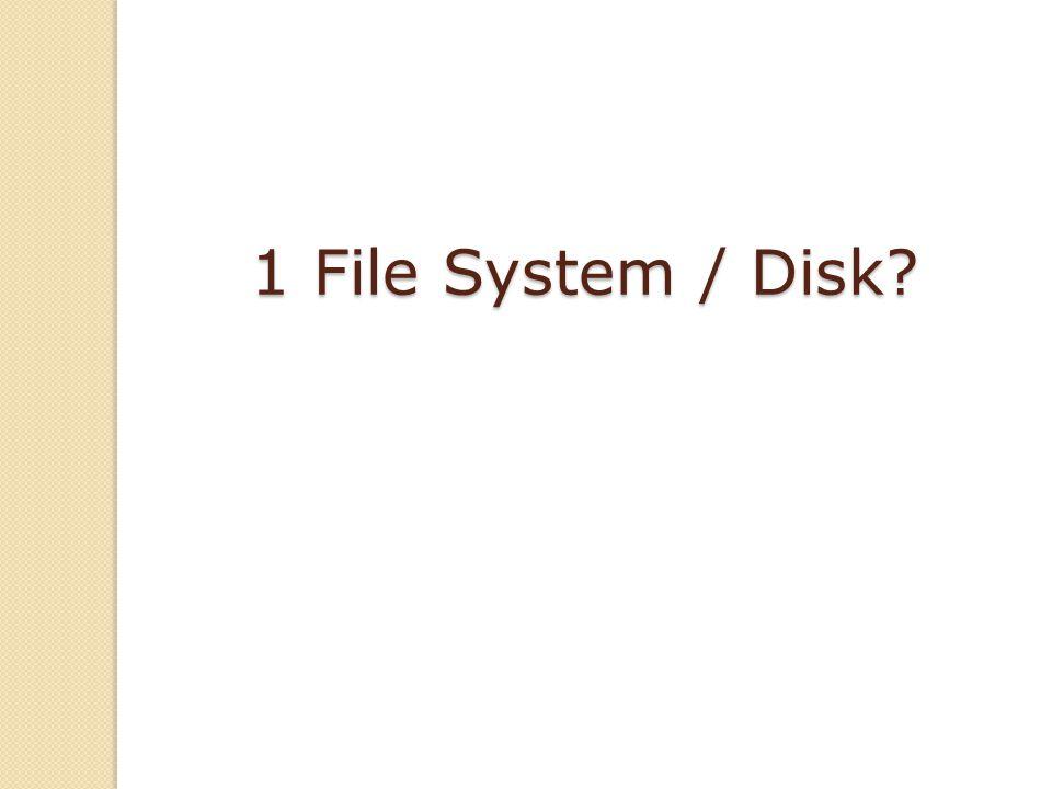 1 File System / Disk