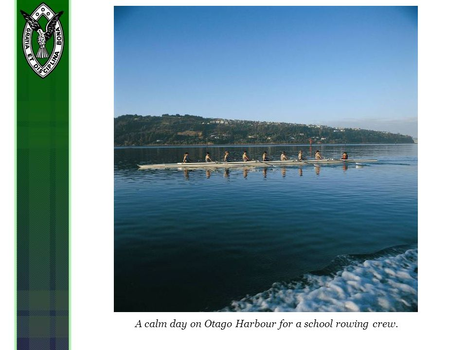 A calm day on Otago Harbour for a school rowing crew.