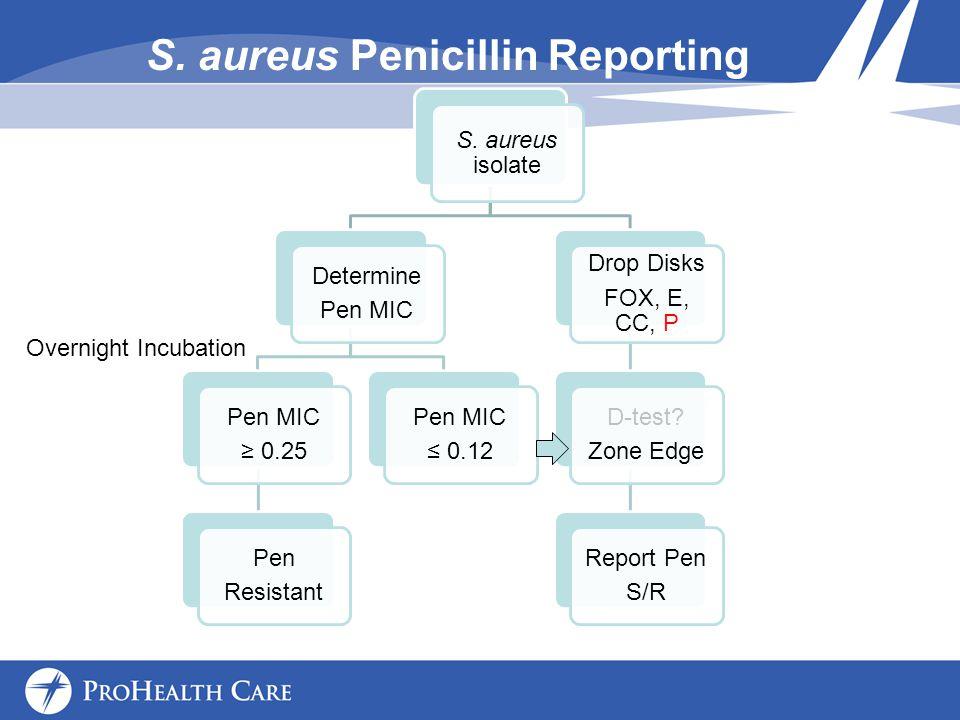 S.aureus Penicillin Reporting S.