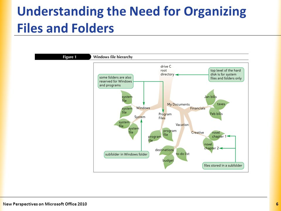 XP Understanding the Need for Organizing Files and Folders New Perspectives on Microsoft Office 20106