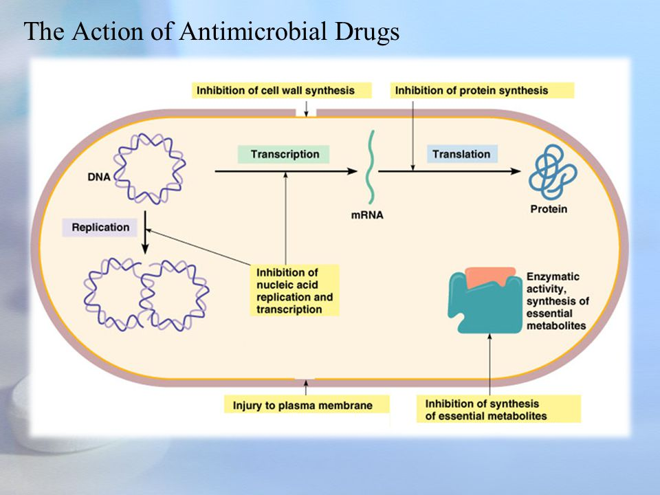 Antimicrobial susceptibility testing by the disk diffusion method (Kirby-Bauer) & Antibiotic profil Purpose of Procedure To test isolated bacteria for its susceptibility to antimicrobial agents Specimen Requirements In general a pure growth of the isolate.