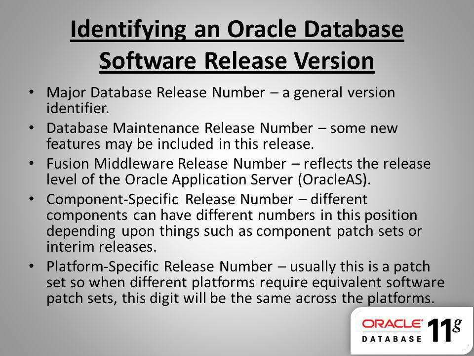 Major Database Release Number – a general version identifier. Database Maintenance Release Number – some new features may be included in this release.