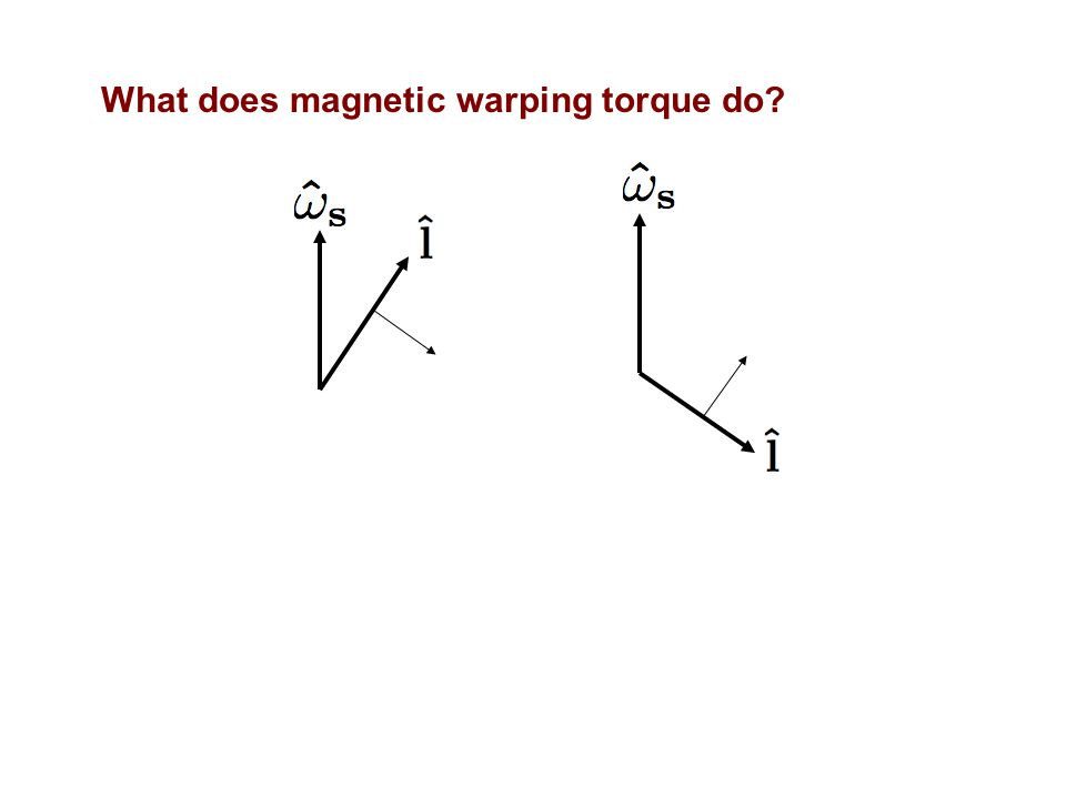 What does magnetic warping torque do