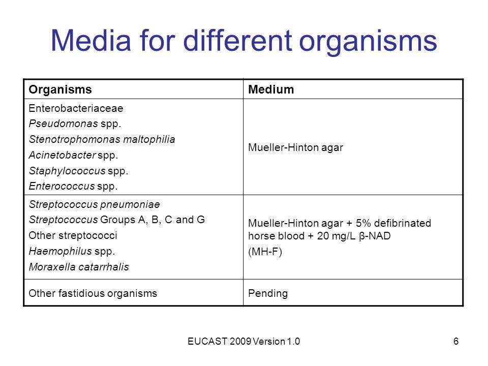 EUCAST 2009 Version 1.06 Media for different organisms OrganismsMedium Enterobacteriaceae Pseudomonas spp. Stenotrophomonas maltophilia Acinetobacter