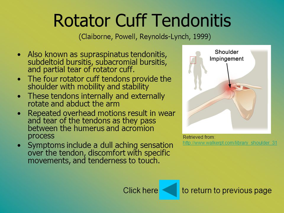 Rotator Cuff Tendonitis (Claiborne, Powell, Reynolds-Lynch, 1999) Also known as supraspinatus tendonitis, subdeltoid bursitis, subacromial bursitis, a