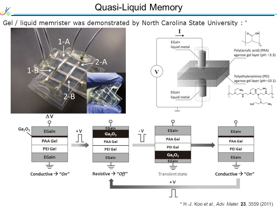 Quasi-Liquid Memory Gel / liquid memrister was demonstrated by North Carolina State University : * * H.-J.