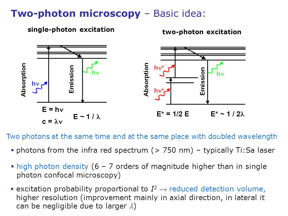 single-photon excitation h h Absorption Emission two-photon excitation h h * Absorption Emission Two photons at the same time and at the same place wi