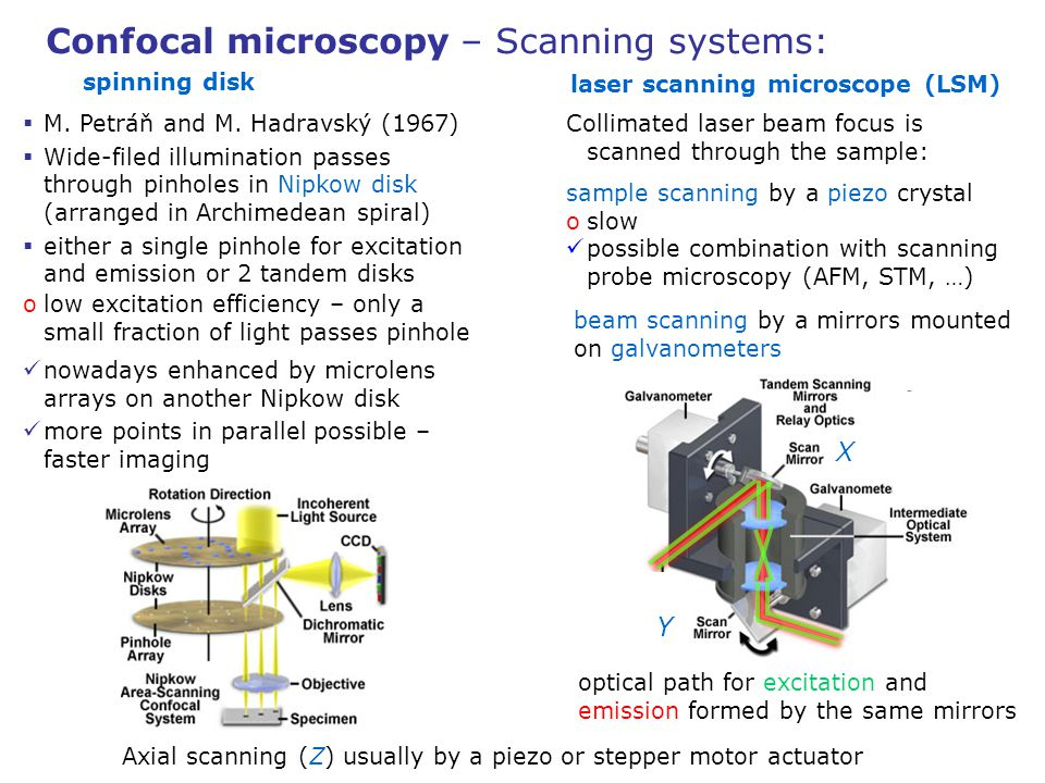 Confocal microscopy – Scanning systems: Collimated laser beam focus is scanned through the sample: sample scanning by a piezo crystal oslow possible c