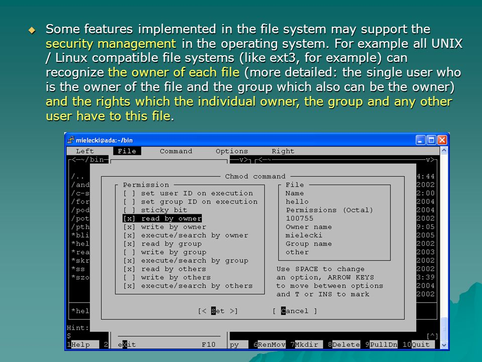 Some features implemented in the file system may support the security management in the operating system. For example all UNIX / Linux compatible file