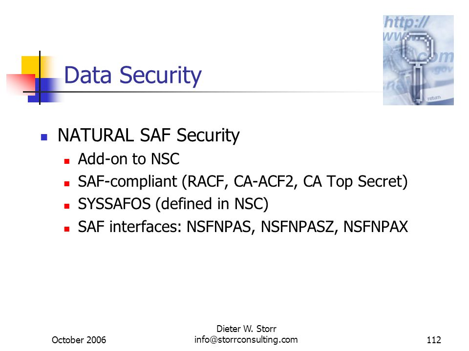 October 2006 Dieter W. Storr info@storrconsulting.com112 Data Security NATURAL SAF Security Add-on to NSC SAF-compliant (RACF, CA-ACF2, CA Top Secret)