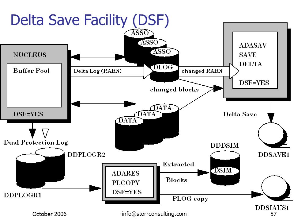 October 2006 Dieter W. Storr info@storrconsulting.com57 Delta Save Facility (DSF)