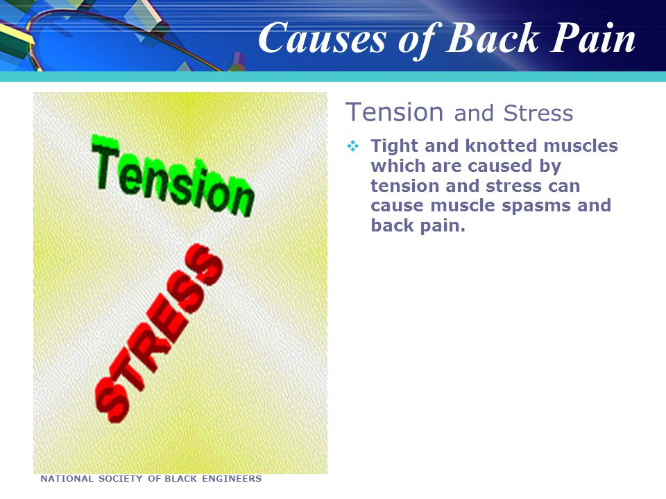 NATIONAL SOCIETY OF BLACK ENGINEERS Tension and Stress Tight and knotted muscles which are caused by tension and stress can cause muscle spasms and back pain.