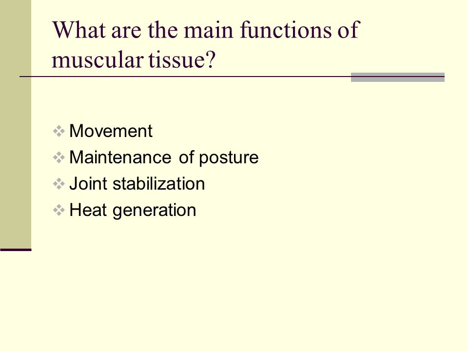 What are the main functions of muscular tissue.