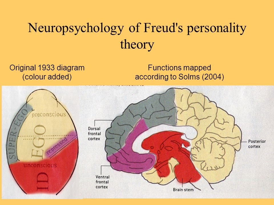 Neuropsychology of Freud's personality theory Original 1933 diagram (colour added) Functions mapped according to Solms (2004)