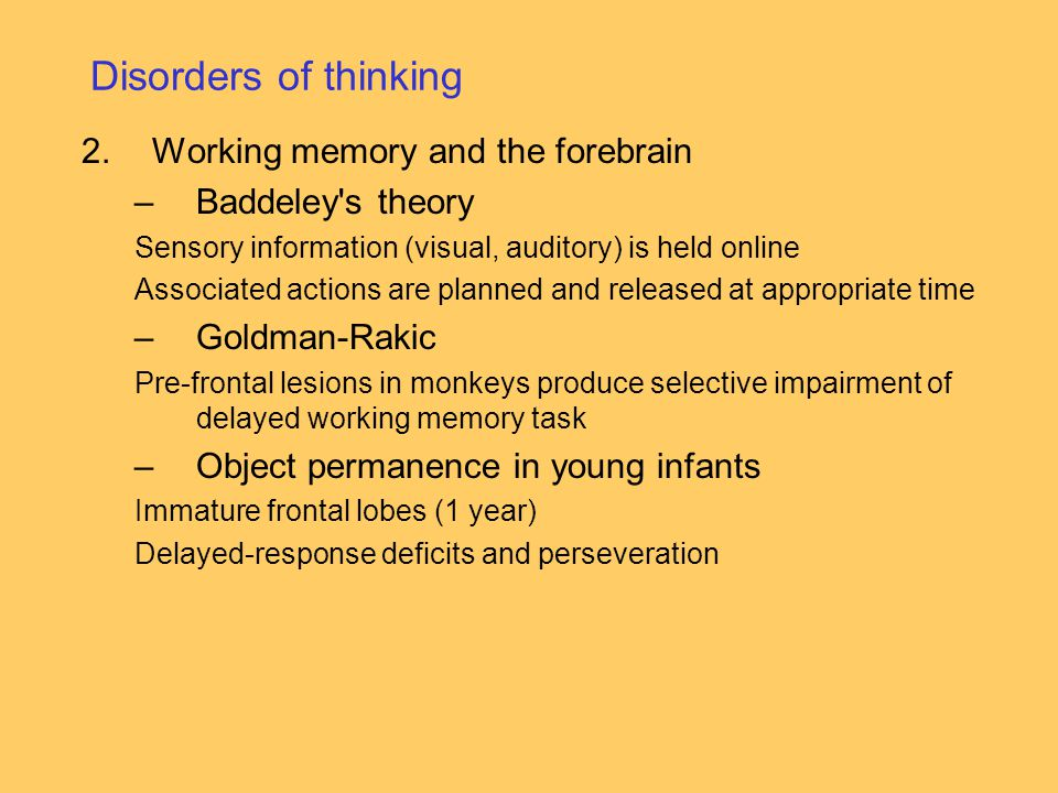 Disorders of thinking 2.Working memory and the forebrain –Baddeley s theory Sensory information (visual, auditory) is held online Associated actions are planned and released at appropriate time –Goldman-Rakic Pre-frontal lesions in monkeys produce selective impairment of delayed working memory task –Object permanence in young infants Immature frontal lobes (1 year) Delayed-response deficits and perseveration