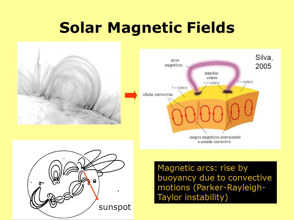 Solar Magnetic Fields Magnetic arcs: rise by buoyancy due to convective motions (Parker-Rayleigh- Taylor instability) Silva, 2005 sunspot